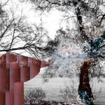 Fue una celebración natural al levantar la mañana De la serie El velo del invierno 34x48,5 cm Impresión offset 2016