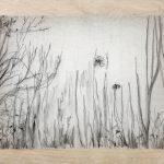 Paisaje. Carboncillo sobre papel de seda. 27x22cm. 2017-19